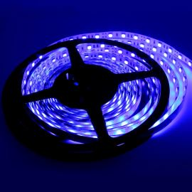 Non-Waterproof LED Strip 5050 Blue - STRF 5050-60-B - 1 meter length