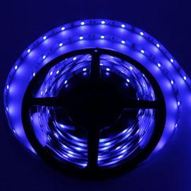 Non-Waterproof LED Strip 5050 Blue - STRF 5050-30-B - 1 meter length