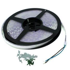 Waterproof LED Strip 5050 Blue - STRF 5050-60-B-IP66