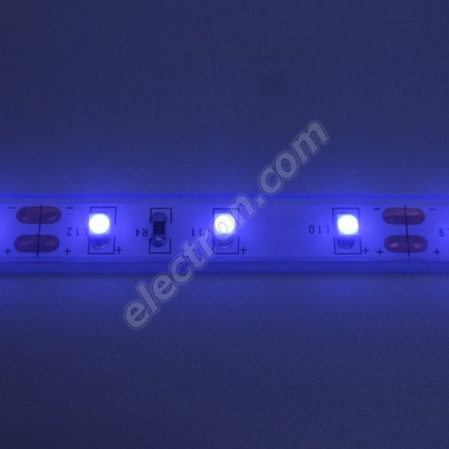 Waterproof LED Strip 3528 Blue - STRF 3528-60-B-IP66