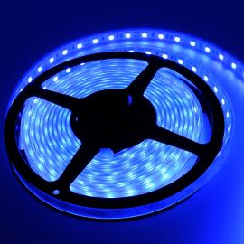 Waterproof LED Strip 5050 Blue - STRF 5050-60-B-IP66